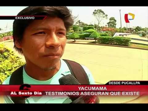 Yacumama: Serpiente De 30 Metros De Largo Habría Devorado A Grupo De Pobladores