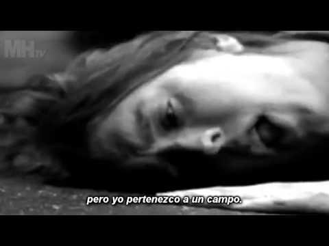 The Strokes - Heart In A Cage (subtitulado)✔