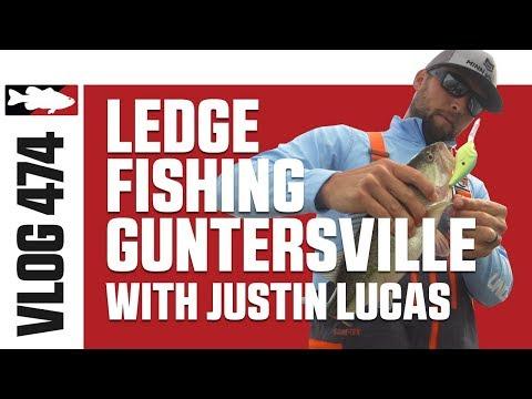 Justin Lucas Ledge Fishing On Guntersville - Tackle Warehouse VLOG #474