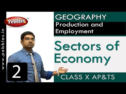 Sectors of Economy | Production and Employment  | Social |Class 10 Science