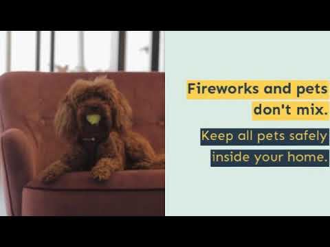 stay-safe-with-firework-safety-tips-from-chase-insurance-group!
