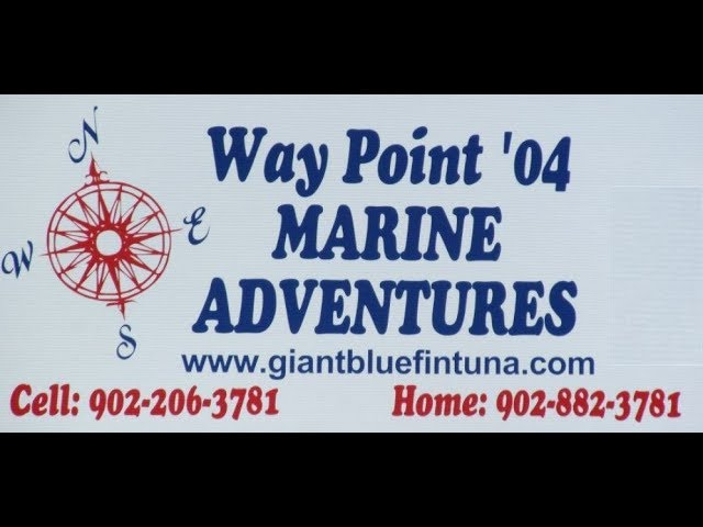 Way Point 04 Tuna Fishing