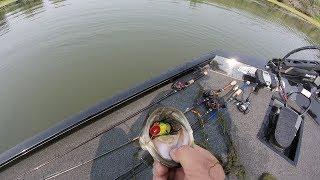 Ca Delta Bass Fishing...(BLUE'S CLUES)