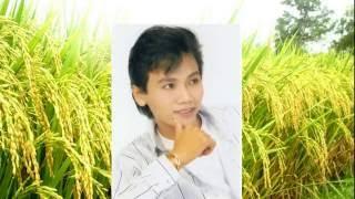 Ca cổ Tiếng hát trên đồng quê (Tấn Giao - Thy Trang)
