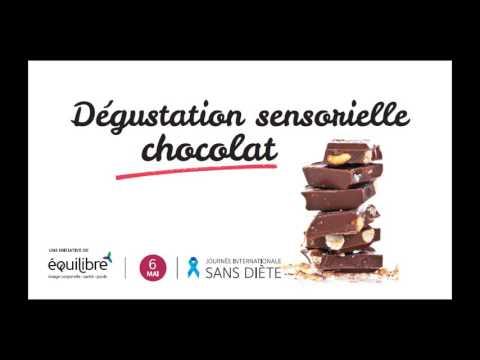 Dégustation sensorielle chocolat