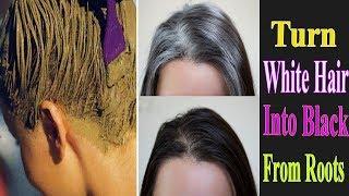 পাকা চুল গুলো কে গোঁড়া থেকে কালো করার সব থেকে কার্যকরী উপায় || White Hair To Black Hair  Naturally