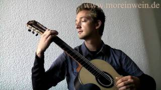 Fernando Sor op.35 No.8 Allegretto - Klassische Gitarre - Classical Guitar - Hanika 58PF NS LH