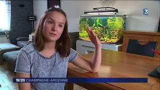 La Marnaise Léa Dancerel-Bourlon est championne de France d'aquariophilie