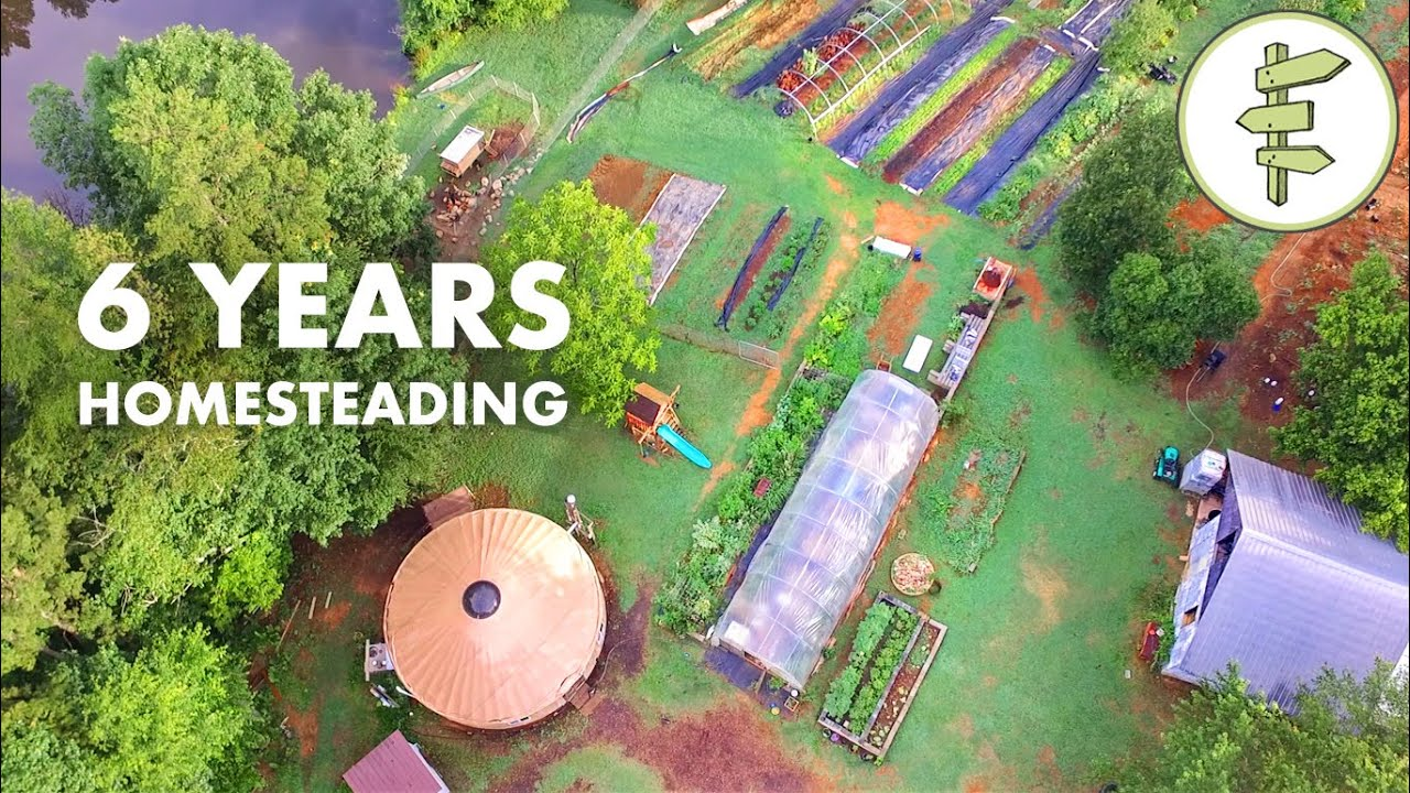 Homesteading & Living in a Tiny Yurt for 6 Years - Family Shares Homestead Experience