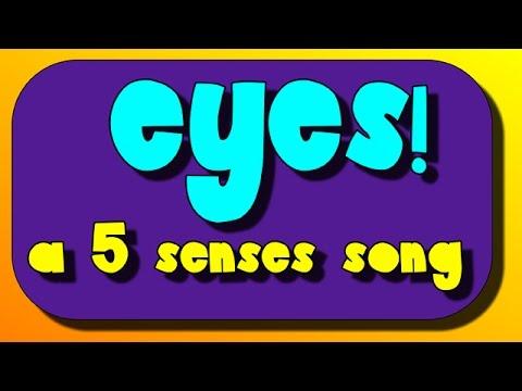 Eyes and Sight! A 5 Senses Sing-Along