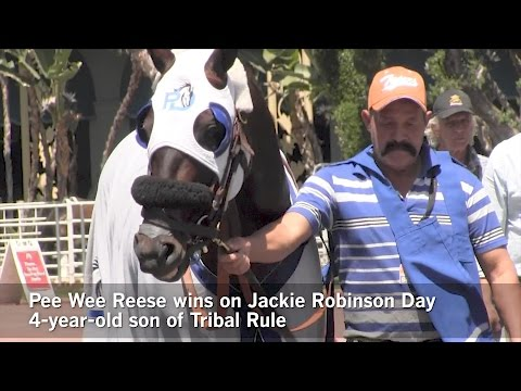 Hunch bet Pee Wee Reese wins on Jackie Robinson Day