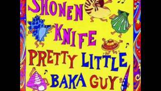 Watch Shonen Knife Summertime Boogie video