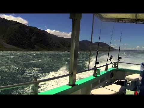 Fishing Trip Cook Strait