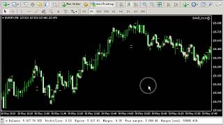 The Best Forex Trading Robot EA 2018