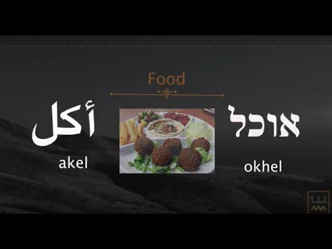 Same Same: Kitchen and Food Words in Arabic & Hebrew