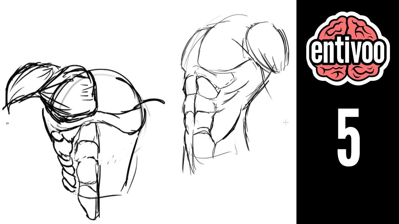 Aprende a dibujar el torzo de una persona - YouTube