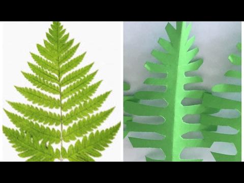 DIY|| Paper fern leaves tutorial