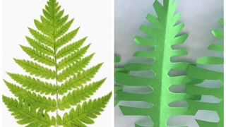 DIY|| Paper fern leaves tutorial