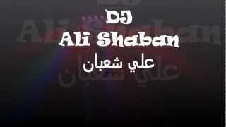 DJ ALI SHABAN - Party 2012