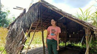 Gadis Dayak    Aktivitas Sehari-hari Gadis Suku Dayak Di Pondok Ladang