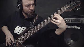 "DISENTOMB - ""Vultures Descend"" on bass"