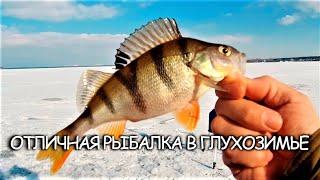 ОТЛИЧНАЯ РЫБАЛКА В ГЛУХОЗИМЬЕ Зимняя рыбалка 2021 в Воронежской области