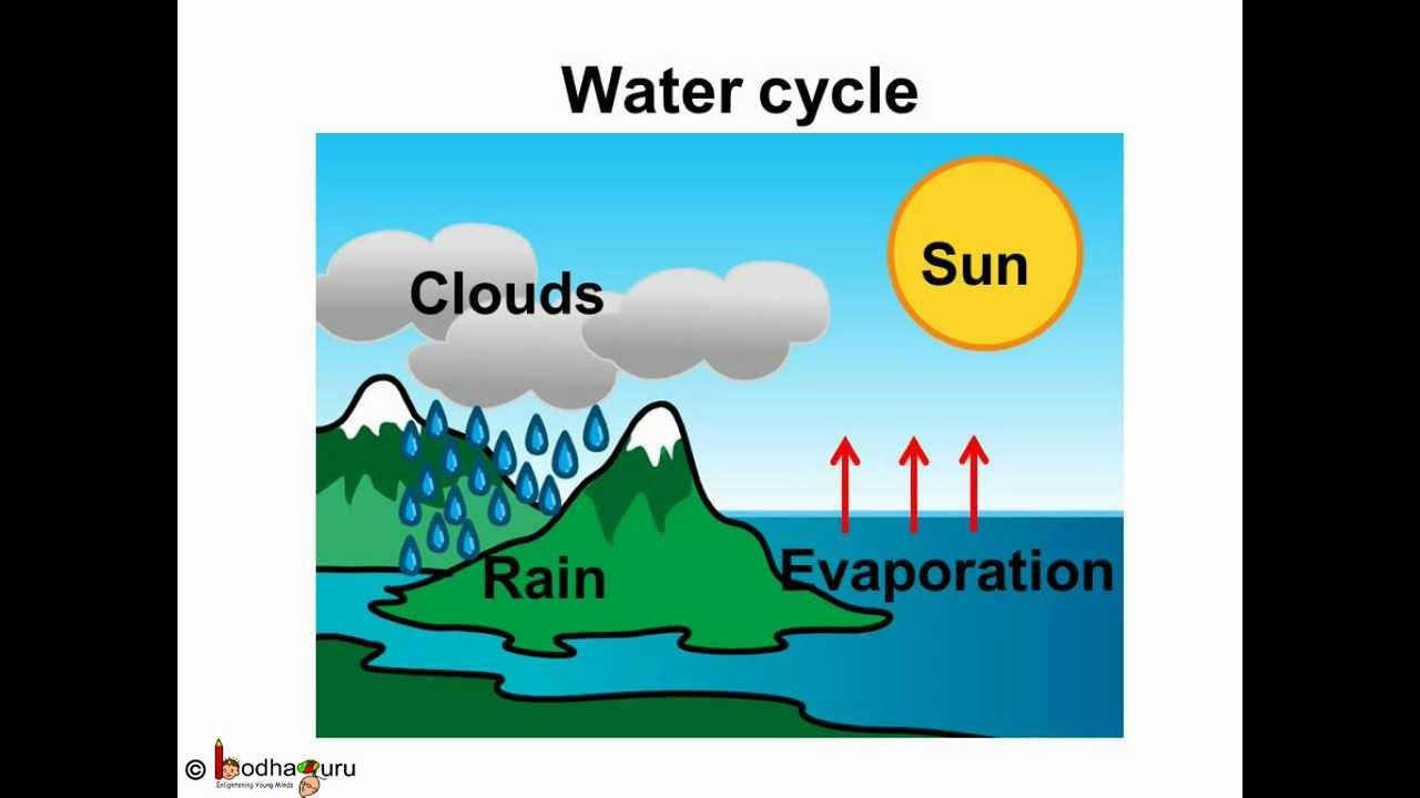 explain the water cycle with diagram [ 1280 x 720 Pixel ]