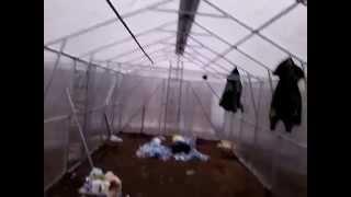 Теплица дачная под поликарбонат 4х8(Теплица двухскатная в Киеве под Поликарбонат, дачная теплица 4х8., 2012-01-20T04:50:02.000Z)