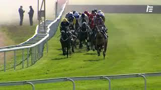 Vidéo de la course PMU PRIX BERNARD BAYROUNAT