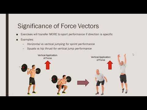 Force Vectors | Implications for the Transfer of Training to Performance