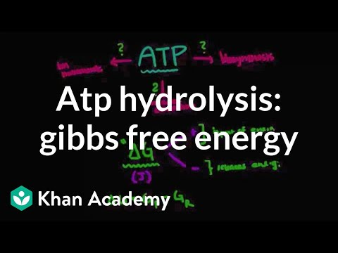 ATP hydrolysis: Gibbs free energy | Biomolecules | MCAT | Khan Academy