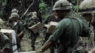 нарезка хронки Вьетнама
