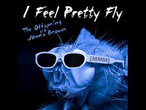 James Brown vs. The Offspring -- I Feel Pretty Fly (For A White Guy) [MadMixMustang]