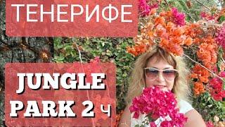 Тенерифе Зимой.Куда Поехать?Jungel Park (Парк Орлов)Канарские острова.Отдых в Испании
