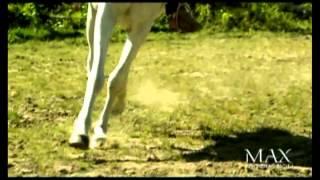 Aurora - Dikur (Official Video)
