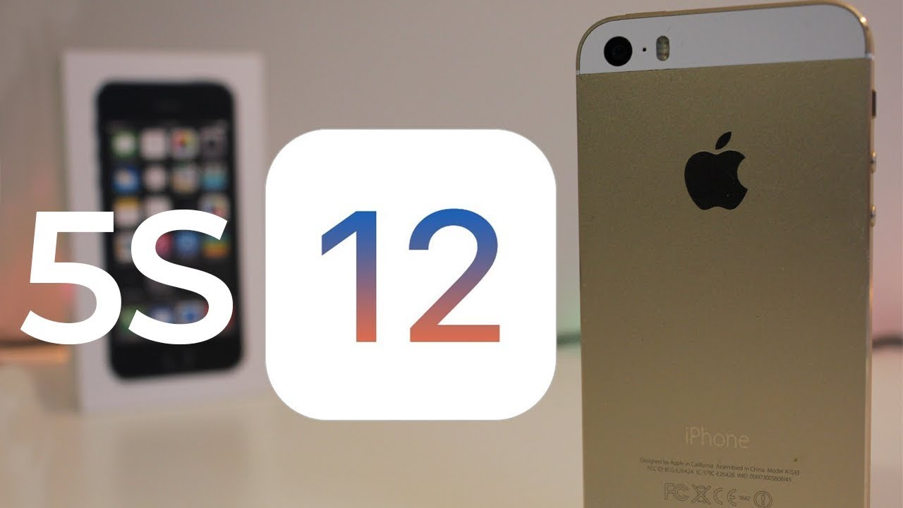 Image result for iphone 5s ios12