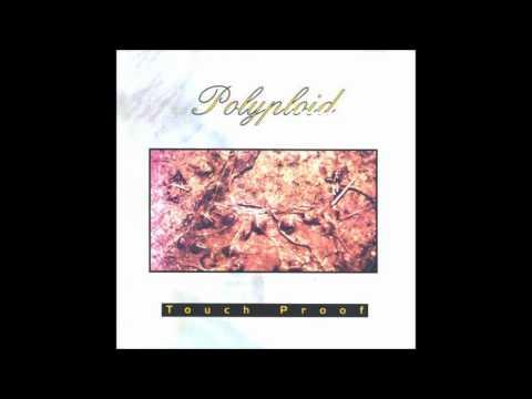 Polyploid - Eidos Form