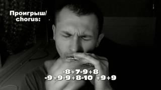 Просвистела (ДДТ) табы для губной гармошки