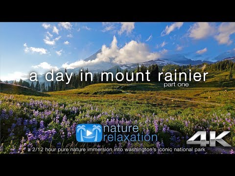 """A Day in Mount Rainier"" 4K UHD 2.5HR Nature Relaxation Film - Washington State (45 min preview)"