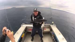 Вибро тунец  / Попробуй удержи! / Мощная рыба