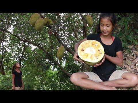 Survival skills: Finding meet natural jackfruit for food - Natural jackfruit eating delicious #37