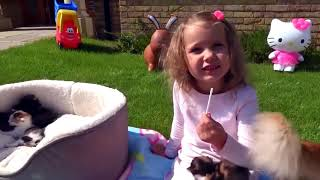 Волшебная ПАЛОЧКА Мисс Кети играет с КОТЯТАМИ и наколдовала себе КУЧУ КОНФЕТ