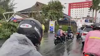 Download Pohon tumbang dijalan Ahmad Yani 1 tepatnya depan Ayani Mega Mall Pontianak
