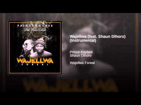 Wajellwa (feat. Shaun Dihoro) (Instrumental)