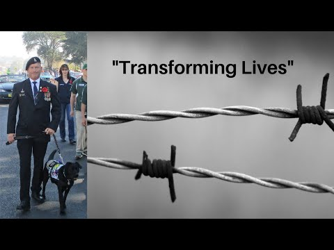 Rescuing dogs, rehabilitating inmates and saving Australian Defence Force veterans.