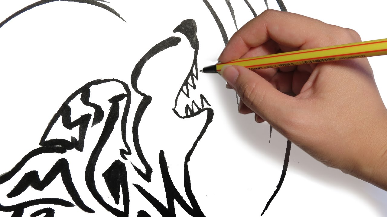 Como Dibujar Un Lobo Tribal Facil Paso A Paso Youtube