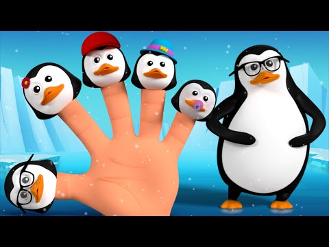 penguin finger family | the finger family | cartoon for kids | kids tv finger family