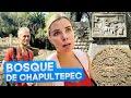 Video de Chapultepec