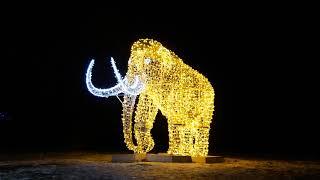 Winter Festival of Lights Dufferin Islands Lights Display in Niagara Falls  2018 - 2019