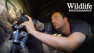I DID NOT EXPECT THIS | Wildlife Photography behind the scenes - photographing from my photo blind